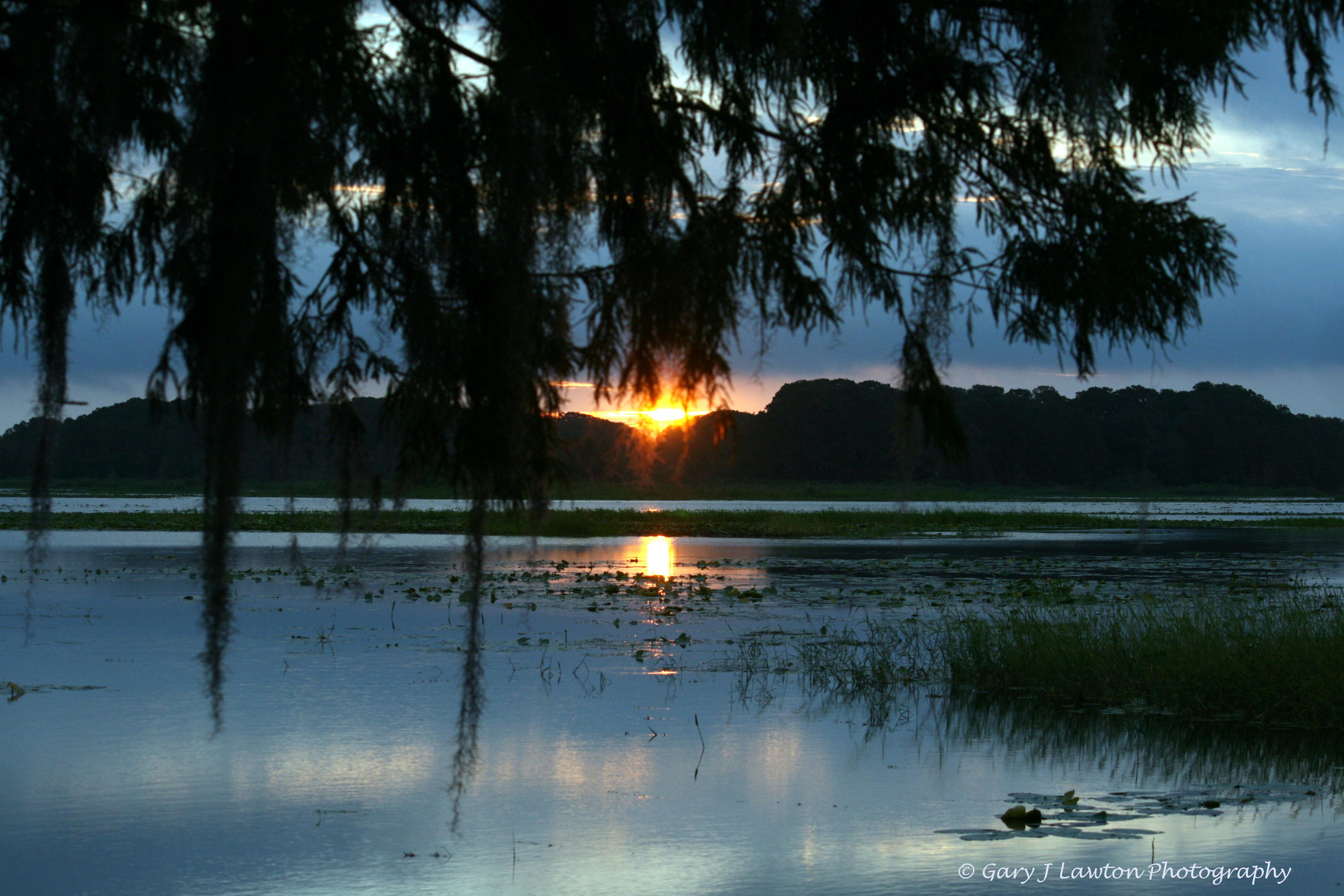 lake tsala apopka  u2013 florida