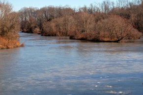 Winter Maryland Pond
