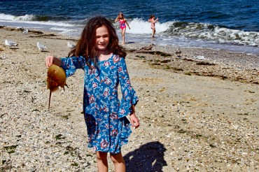 Aileen and Horseshoe Crab